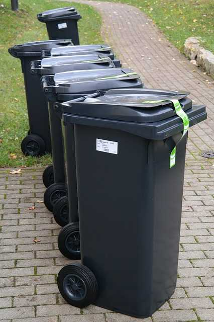 Bin Collection in Armadale