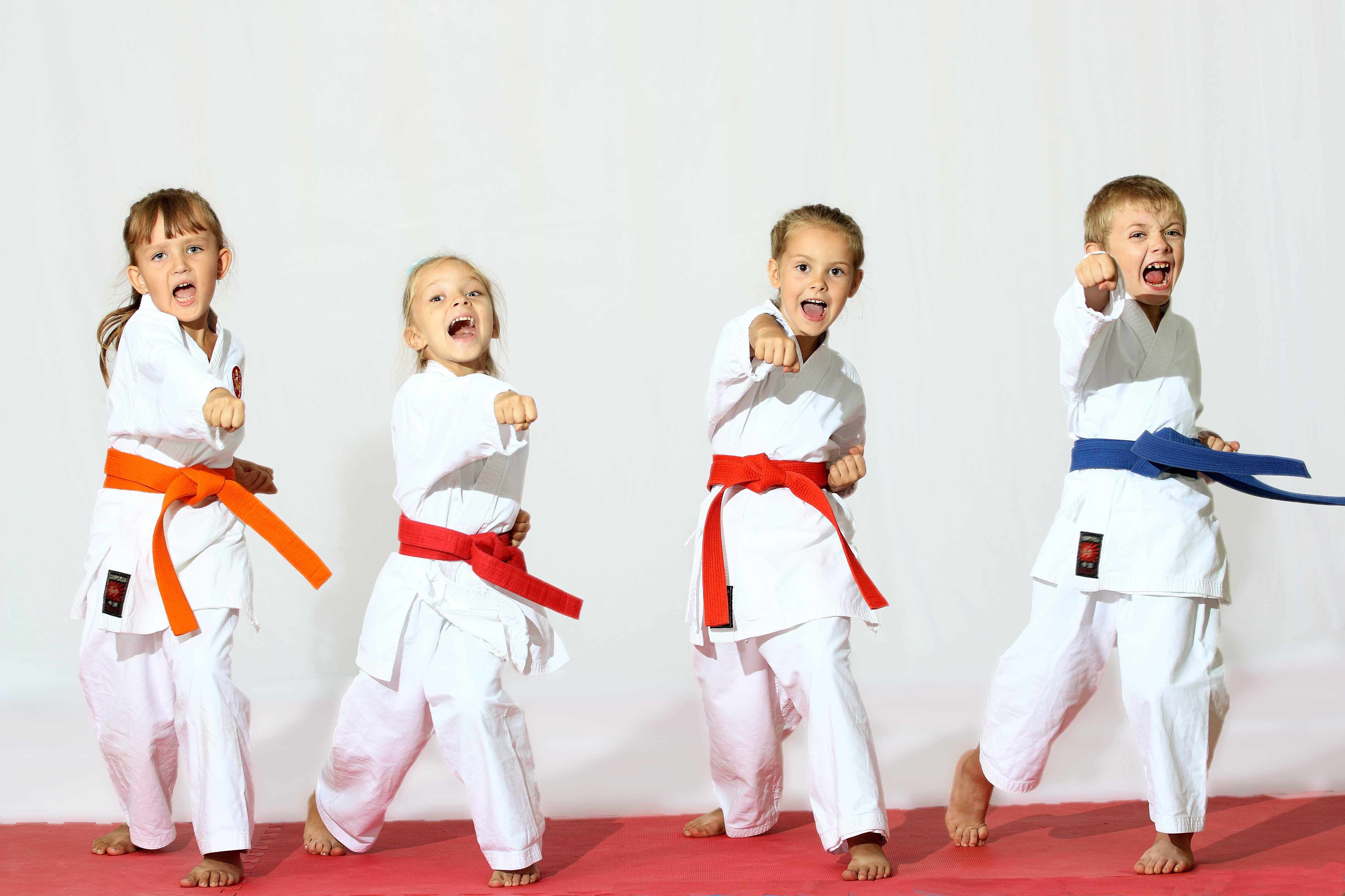 Martial Artist Kids