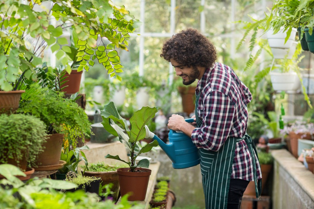 How Horticulture Thrives All Year