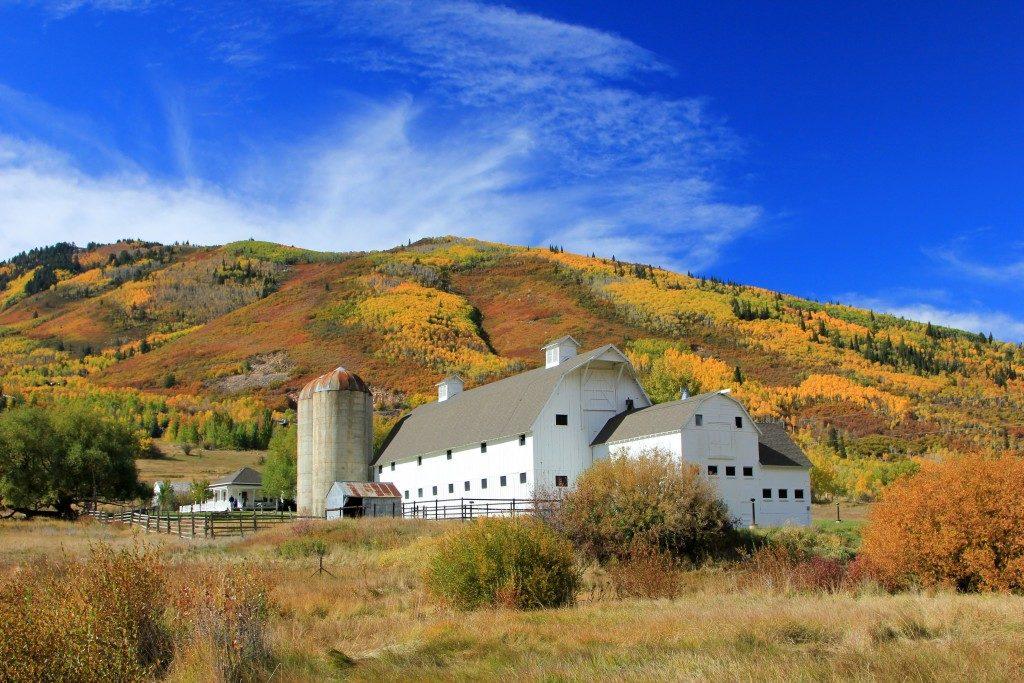 White barn in the field