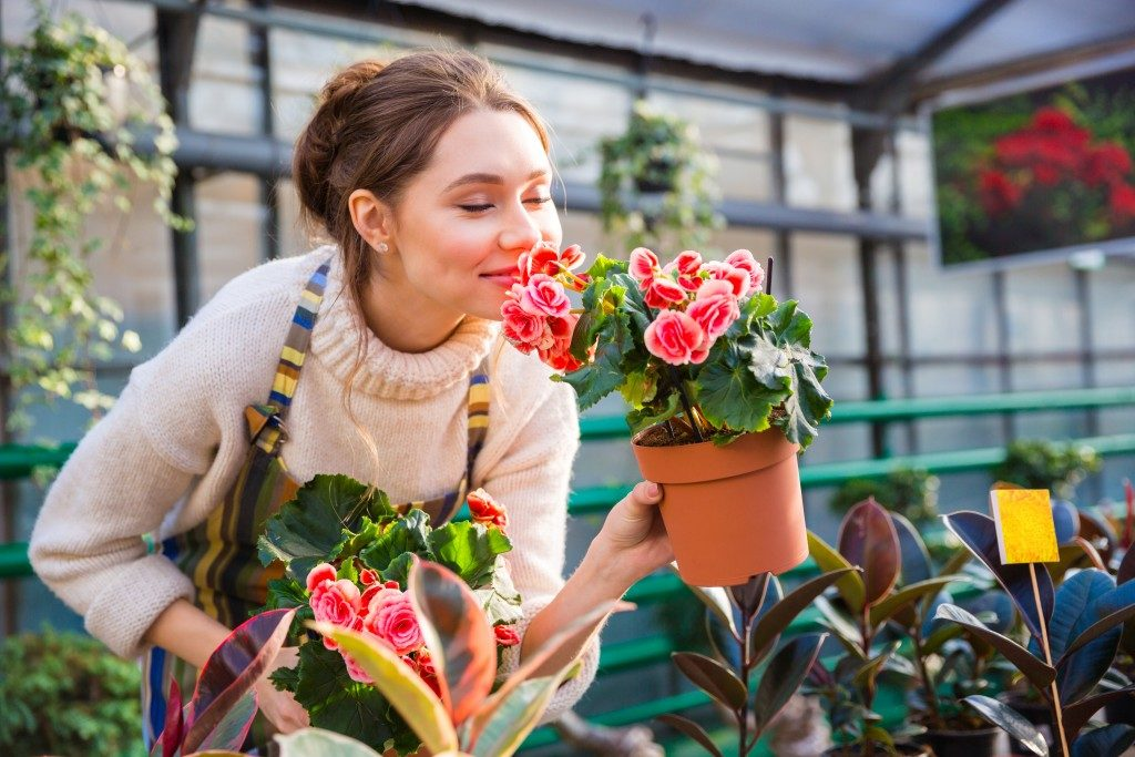 Woman holding potted plants