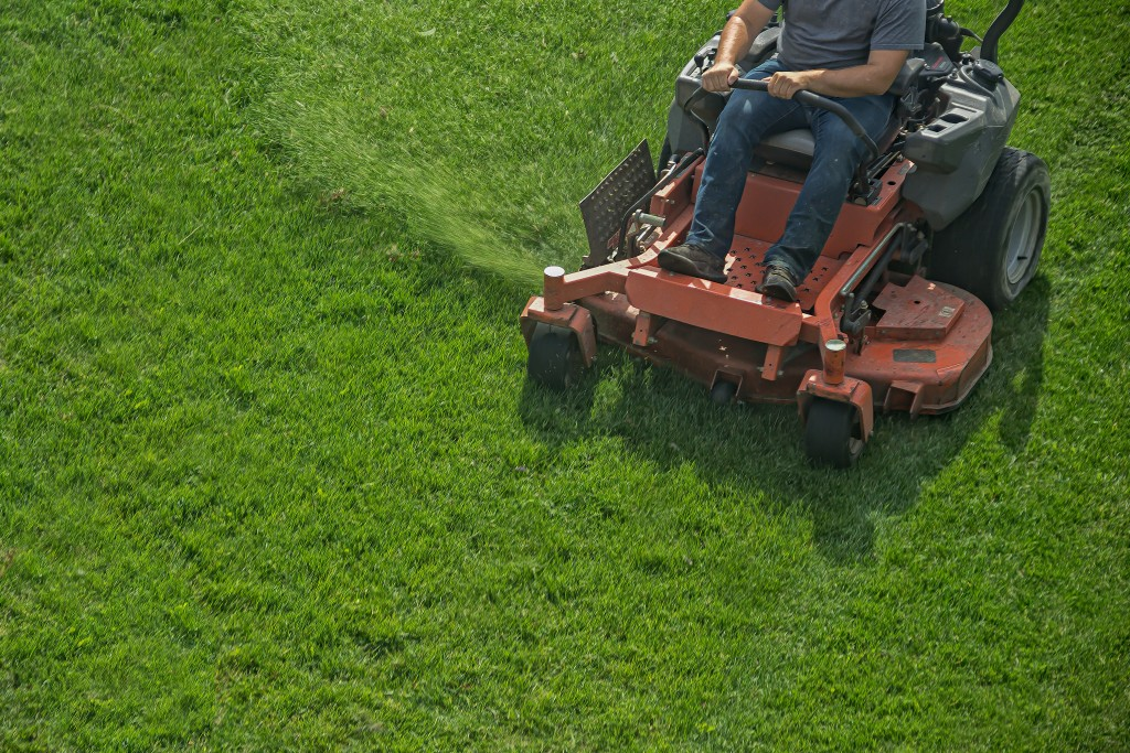Are You into Lawn Landscaping and Maintenance? Here Are Your Biggest Markets